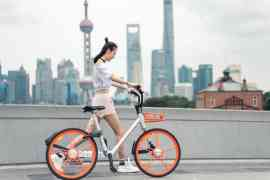 Dockless Sharing Bike in China